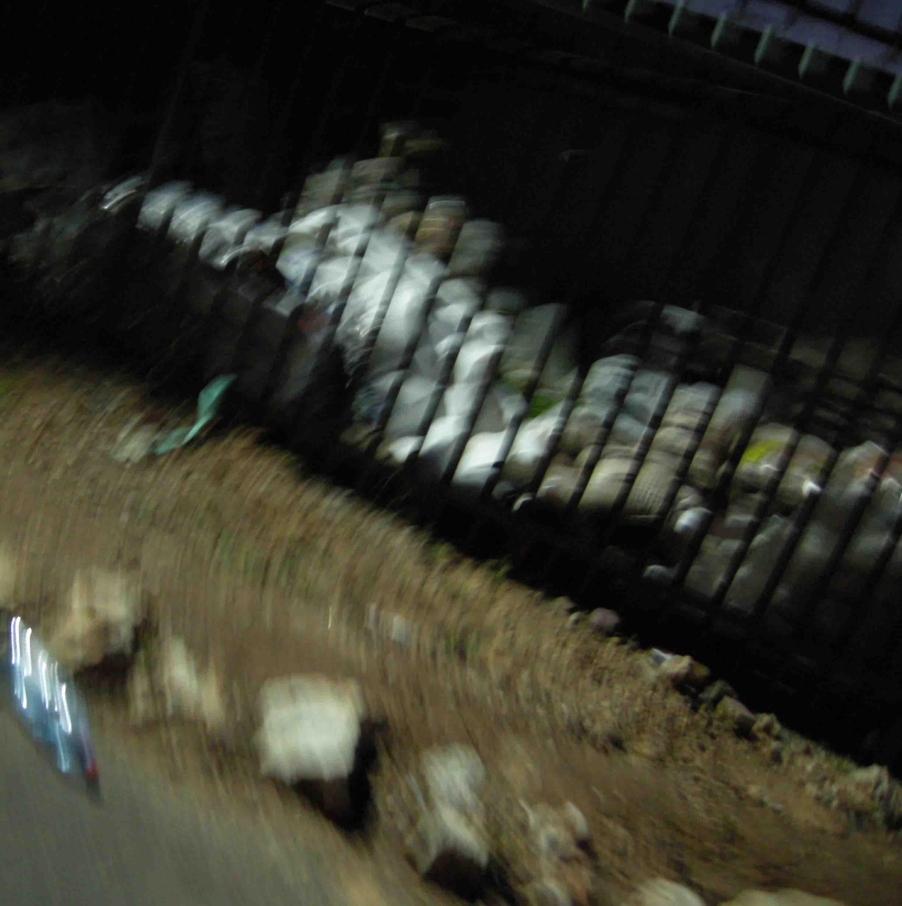 Picture 2012 055MOtisagron